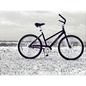 Coastal Unisex Rental Bike, Black, 26-inch